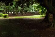 【真夏の夜の淫夢】パリピライフに彩りを!都内の厳選「アウトドアスポット」3選