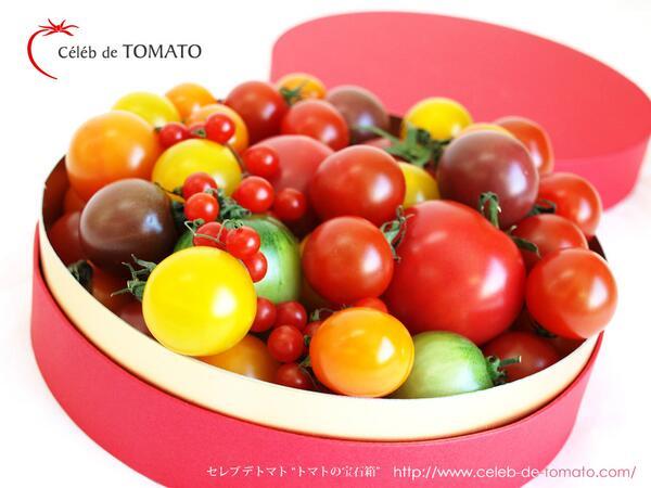 Celeb de TOMATO_トマトの宝石箱