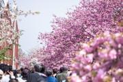 【春のモテ準備】新学期に向けてイメチェン! 今からできる春の改造計画