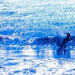 【モテる男の趣味】サーフィンに起こりがち!困った時の対処法
