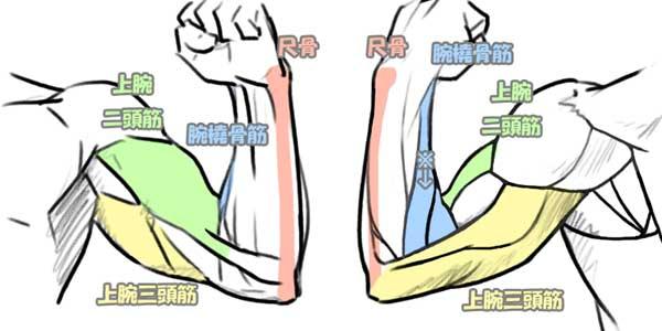 arm3_1b