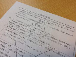 【芦田愛菜ちゃんってどんだけスゴイの?】偏差値70の名門中学受験問題にMTRLモデルが挑戦!
